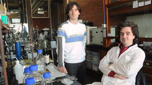 Martín Bellino y Galo Soler Illia desarrollaron, en su laboratorio de la CNEA, un compuesto híbrido orgánico-inorgánico que conserva su funcionalidad biológica.